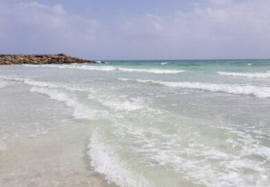Salalah i Oman – Trevligt resmål för vinterbleka nordbor