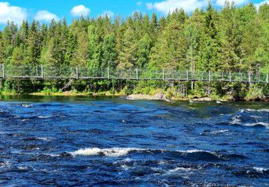 Mårdseleforsen vid Vindelälveln och ett kort besök i Umeå – Bilresa genom Norrland