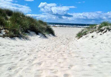 Sand mellan tårna – Ett besök på stranden i Skanör & Falsterbo
