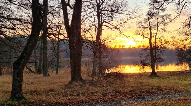 Det handlar om minuter – Sol i december