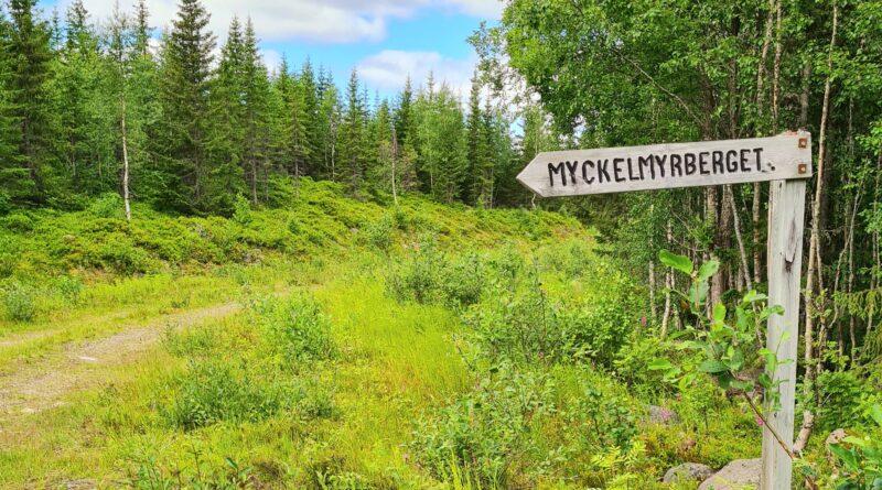 Medelpads högsta topp – Myckelmyrberget 577,7 m.ö.h